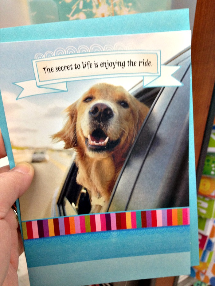 hallmark-#valuecards-#shop-card #CollectiveBias