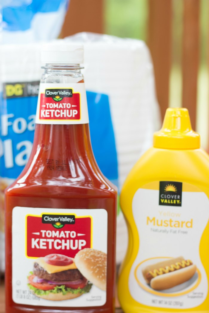 summer-survival-kit-condiments