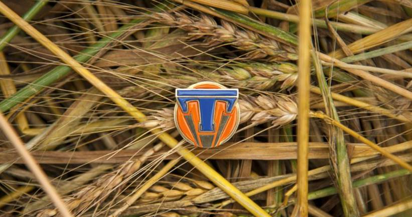 tomorrowland-pin-wheat